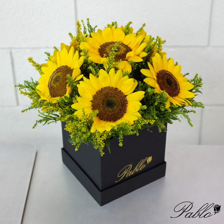 sunflowers new