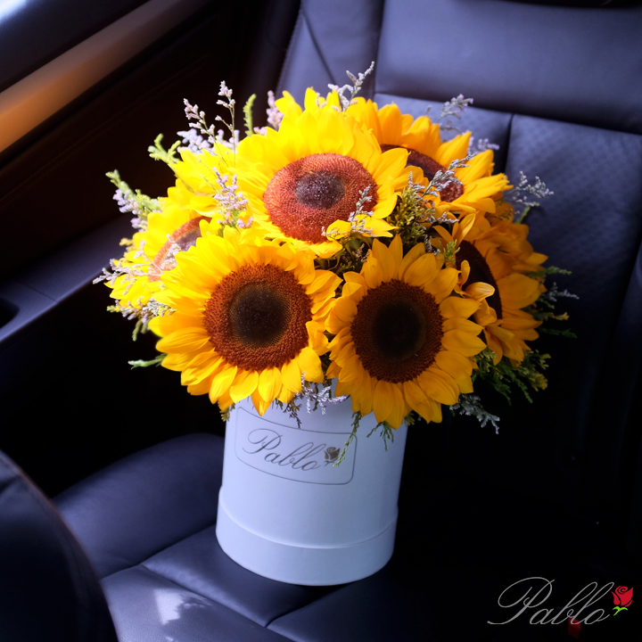 sunflowers wb